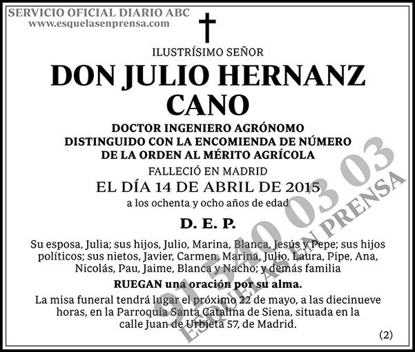 Julio Hernanz Cano
